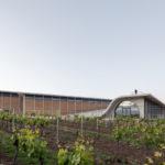 Lahofer Winery Chybik + Kristof