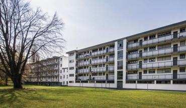 [1] Frisch durchsanierte Wohnzeile: rechts ein Laubenganghaus von circa 1950, das die Architektursprache des linken Nachbargebäudes von Walter Gropius weiterentwickelte