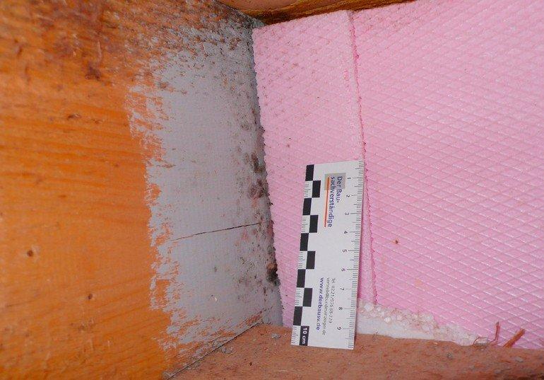 verdecktem schimmel auf die spur kommen vom sp rhund bis zur laboruntersuchung. Black Bedroom Furniture Sets. Home Design Ideas
