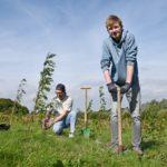 ErstTree-Projekt, Dortmund, Architektur, Nachhaltigkeit, Bäume