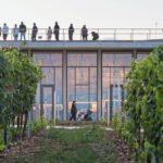 Weingut Lahofer, Dobšice (CZ), Chybik + Kristof Architects