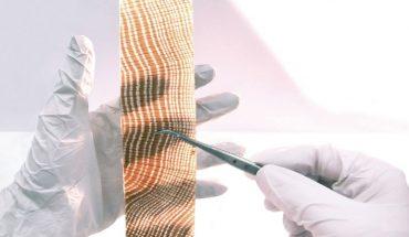 WooDoo: transparentes Holz