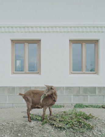 db070818Einstieg_Bauernhaus_006cmyk.jpg